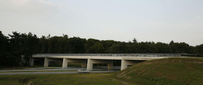 verkeersbrug Delftlanden Emmen betonnen uiterlijk en naastgelegen bos