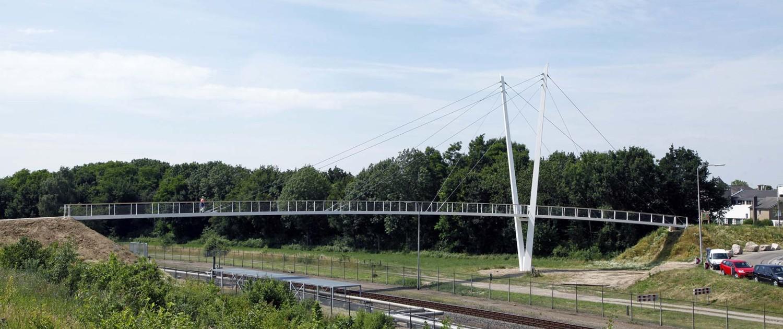 zijaanzicht asymmetrische v-vormige pyloonbrug met houten handregel en slank stalen wegdek, Heidekamppark Stein, brugontwerp door ipv Delft