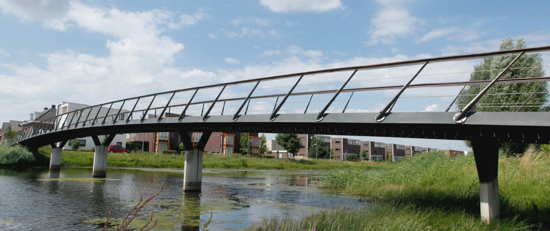 Verkeersbruggen De Waalsprong Nijmegen bruggenfamilie verkeersbruggen en fiets- en voetgangersbruggen opvallend ontwerp schuin hekwerk brugontwerp