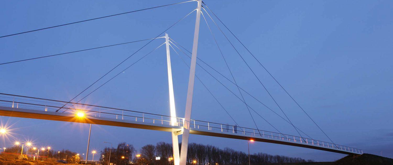 zijaanzicht verlichte pyloonbrug Stein Heidekamppark