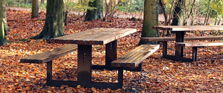 picknicktafel Amsterdamse Bos, hersft