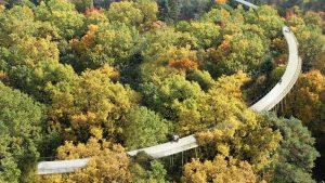 vogelvlucht fietsbelevenis in het bos, ontwerp cirkelvormig fietspad tussen boomtoppen