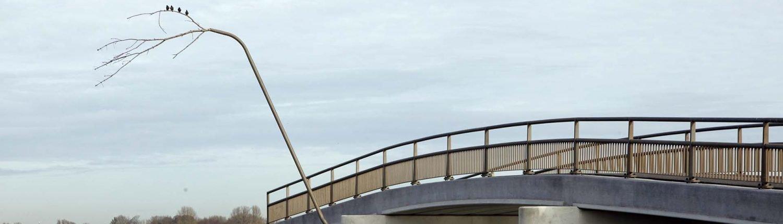 vogelstok met vogels stevige brug Noordwaard ipv Delf