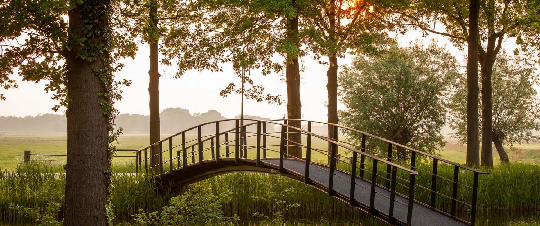 RNH.01_011_voetgangersbrug-sGravenlandsevaars-Ankeveen-natuurgebied-zon-ipvDelft