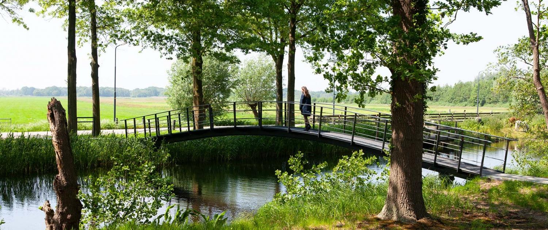 RNH.01_066_voetgangersbrug-sGravenlandsevaars-Ankeveen-natuurgebied-zij-aanzicht-ipvDelft